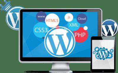Vulnerabilidades en sitios web